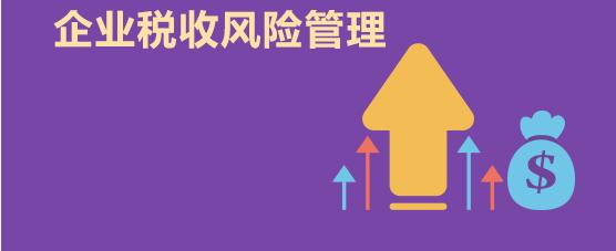 公司<a href='http://www.pinyuzixun.cn/xwzx/nashui/' target='_blank'><u>纳税筹划</u></a>风险防范与管理的方法